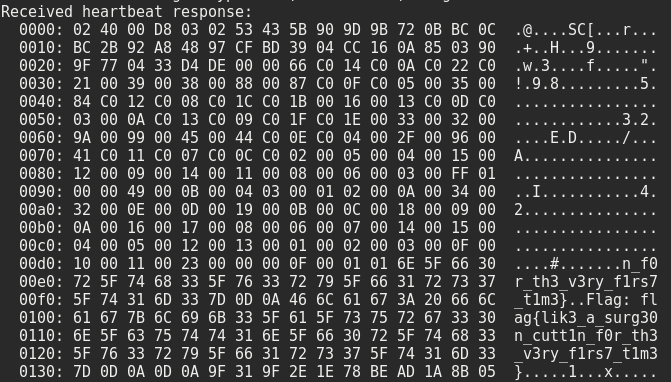 Flag in Heartbleed memory dump